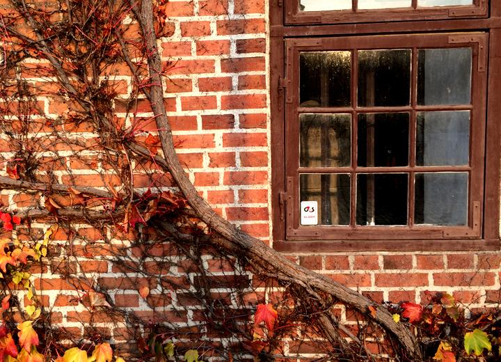 デンマークの木製窓