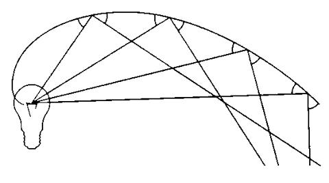 P122対数螺旋-3