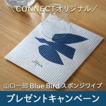 【数量限定企画】山口一郎Bluebirdスポンジワイププレゼントキャンペーン